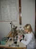 Лаборатория механики